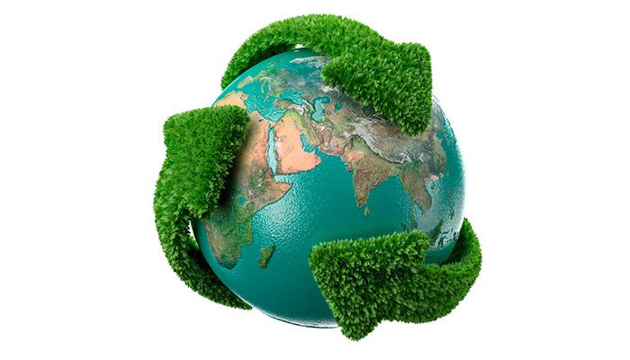 Atitudes sustentáveis Meio Ambiente Ecoplan