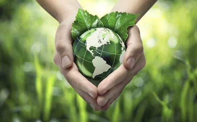 Selos Ambientais Verde
